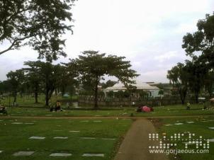 Eternal Gardens