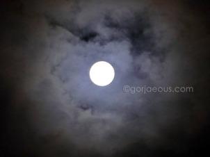Lunar Eclipse 2009a