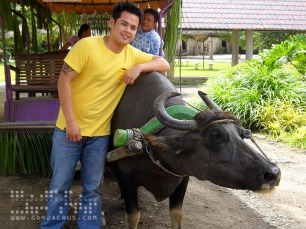 Miggy and Little Miss Carabao