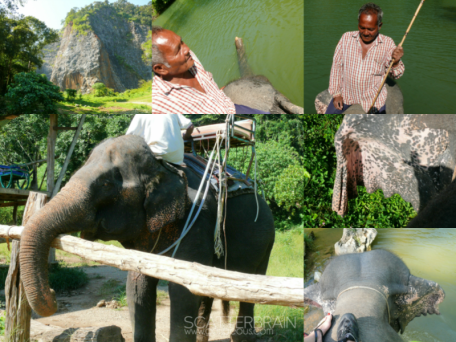 Meet The Elephant and The Tourist Guide